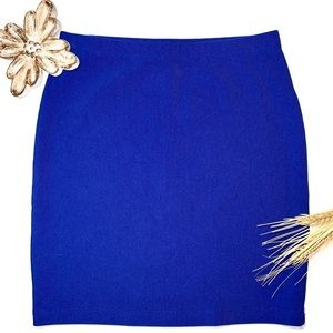 🌿3/$19🌿 blue bodycon skirt